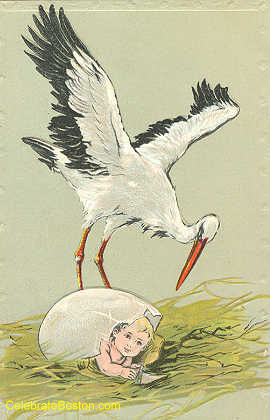 An Egg Has Hatched New Baby Card, 1911