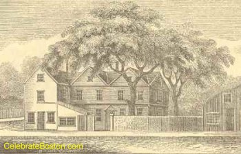 Old Liberty Tree Boston