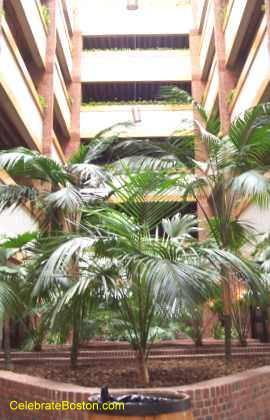 Atrium & Galleria