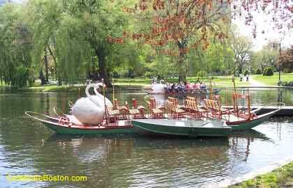 Two Swan Boats
