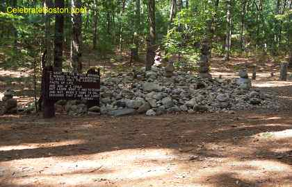Thoreau Camp Site