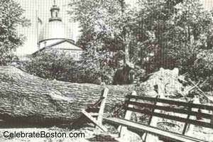Hurricane of 1938, Boston Common