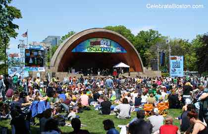 Hatch Shell Lawn