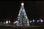 Nova Scotia Christmas Tree