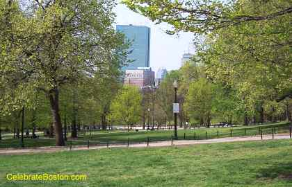 Boston Common Looking Toward Back Bay
