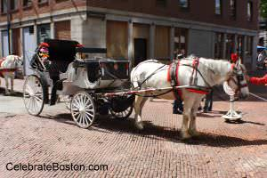 Horse & Carriage Tour Boston